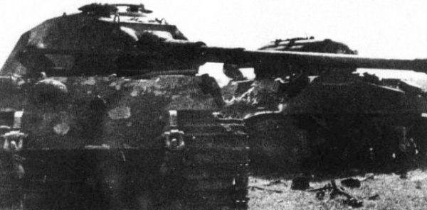 John Gorman's 'Ballyragget' interlocked with the Tiger II.