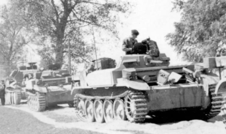 Panzerkampfwagen II Flamm Ausf. A of the 101 Panzer (flamm) Abteilung, June 1941
